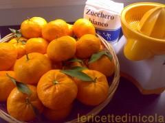 sorbetto-mandarino.jpg