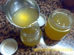 marmellata-limoni-s.b.9.jpg