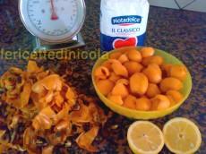 cucina,ricetta,ricette,ricette marmellate,confetture,ricette con le nespole,ricette fotografate,