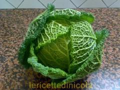 cucina,ricetta,ricette,ricetta fotografata,ricetta cavolo verza,ricetta siciliana,ricetta vegetariana,