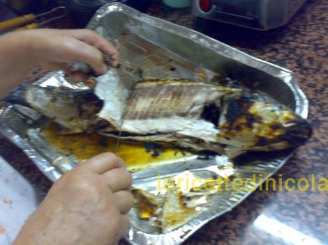 cucina,ricetta,ricette,ricette pesce,pesce azzurro,ricetta fotografata,come cucinare il cefalo,ricetta economica