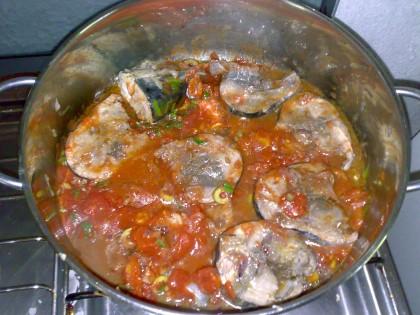 cucina,ricetta,ricette,ricetta pesce azzurro,ricetta tonnetti,ricetta con foto,cucina tradizionale siciliana, dieta mediterranea,