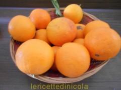 cucina,ricetta,ricette,ricette dessert,gelo di arance,ricette con arance,ricette fotografate,dolci fatti in casa,ricette dolci