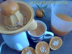 sorbetto-mandarino.1.jpg