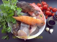 zuppa-pesce-di-scoglio.jpg