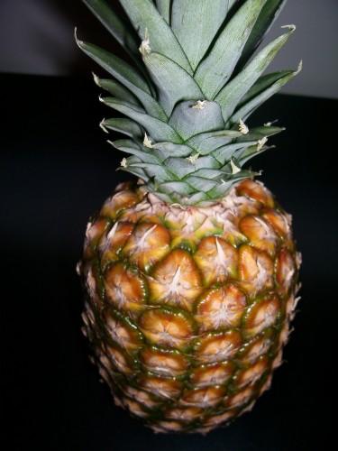 ananas 019.jpg