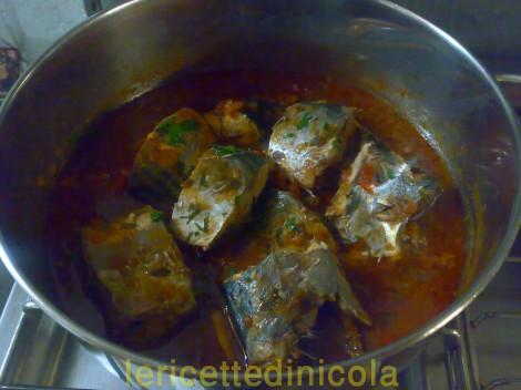 cucina,ricetta,ricette,ricetta pesce azzurro,ricetta palamita,ricetta siciliana,